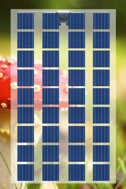 Transparent Photovoltaic Modules to 36 cells